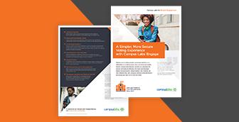 Screenshot of Online Elections Brochure